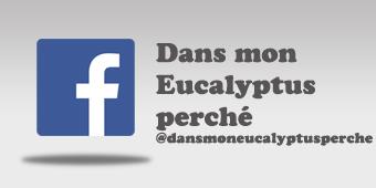 logo-facebook-long