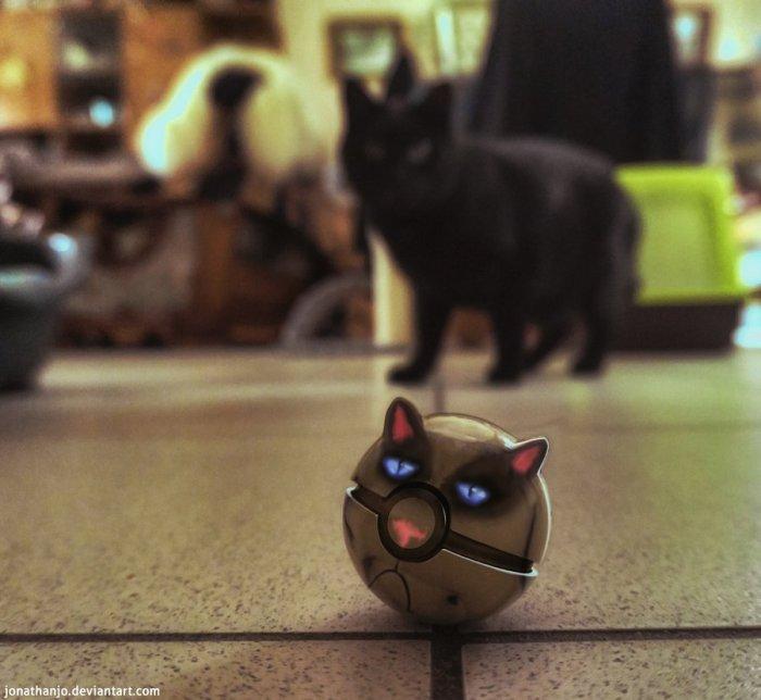 The Grumpy Cat Pokeball