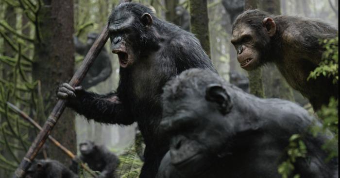la-planete-des-singes-l-affrontement-dawn-of-the-planet-of-the-apes-30-07-2014-9-g