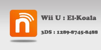 Logo Nintendo ID Long