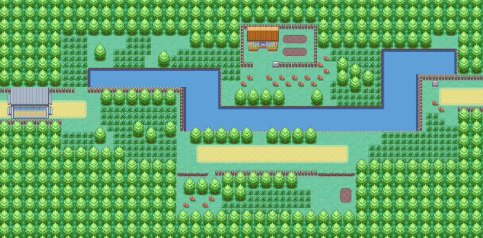 Entre sentiers de montagne et chemins campagnards, les axes de circulation des régions de Pokémon sont très peu marqués par l'homme. Ici la route 205.